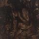 Renoir I, Öl/Leinwand, 50 x 40 cm, 2006/11