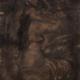 Renoir III, Öl/Leinwand, 50 x 40 cm, 2006/11
